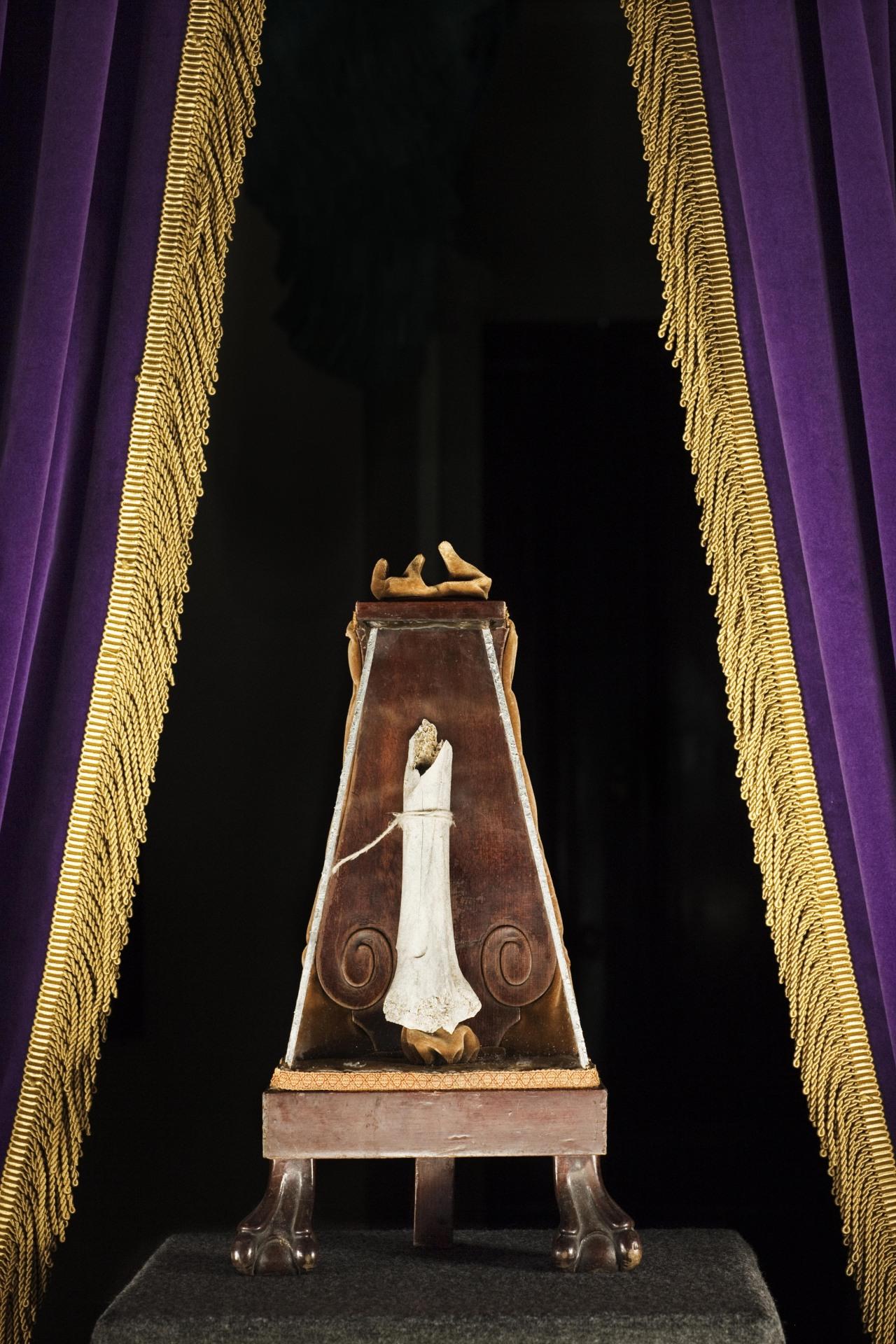 Leg of Mercy